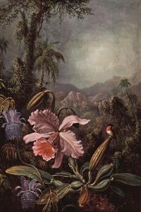 Orchids, Passion Flowers And Hummingbirds by Martin Johnson Heade