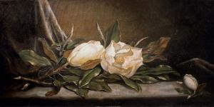 White Magnolias on a Blue Cloth by Martin Johnson Heade