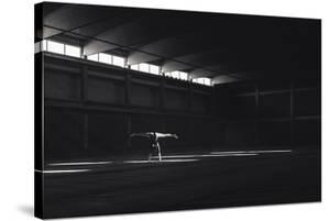 Ballando Nella Luce by Martin Krystynek
