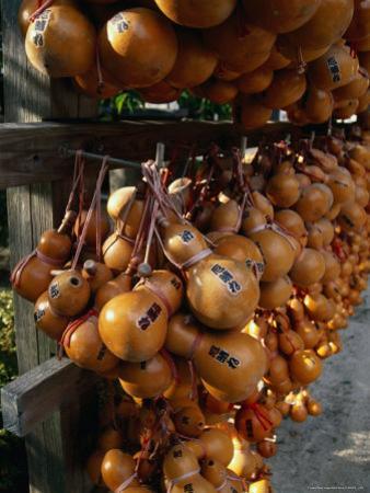 Hollow Gourds Hanging at Shrine, Tokyo, Japan