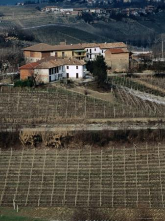Vineyards, Wineries and Hills of Neive, Langhe District, Neive, Italy