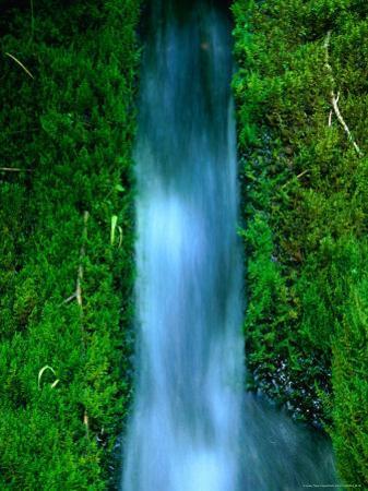 Waterfall Cascading Through Foliage, Plitvice Lakes National Park, Zadar, Croatia