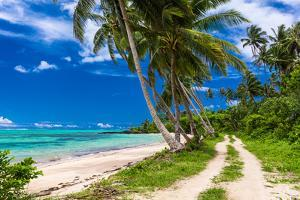 Tropical Beach on Samoa Island with Palm Trees and Dirt Road by Martin Valigursky