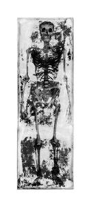 Skeleton IV by Martin Wagner