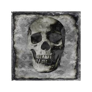 Skull III by Martin Wagner