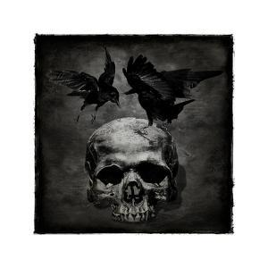 Skull with Crows by Martin Wagner