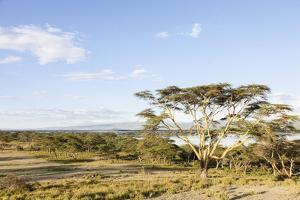 Lake Naivasha and Crescent Island Game Park, Naivasha, Kenya by Martin Zwick