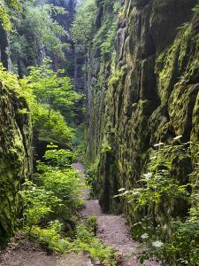 Nasse Schlucht at Kuhstall Cave, Saxon Switzerland, Germany, Saxony by Martin Zwick