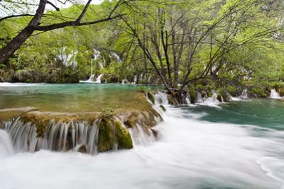 The Waterfalls of the V. Cascade, Plitvice Lakes, Plitvicka Jezera, Croatia by Martin Zwick