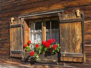Traditional Window with Planter, Tyrol, Austria by Martin Zwick