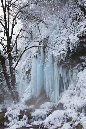 Winter, Schleierfaelle, Upper Bavaria, River Ammer, Pfaffenwinkel, Germany by Martin Zwick