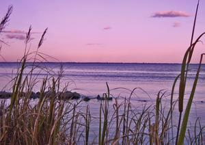 Sunset at Outer Banks, near Corolla by Martina Bleichner