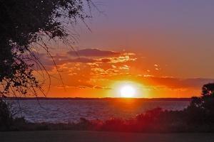 Sunset in Williamsburg, Cobham Bay by Martina Bleichner