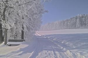 Winter Scene in Bavaria by Martina Bleichner