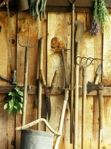 Garden Tools Hanging in Shed Fork, Shears, Rake, Lopper, Axe, Saw & Gardening Gloves by Martine Mouchy