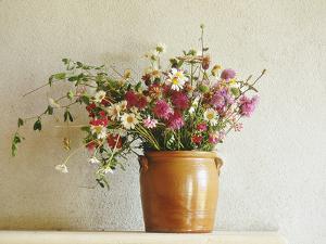 Summer Arrangement of Wild Flowers in Glazed Jar Against Whitewashed Wall by Martine Mouchy