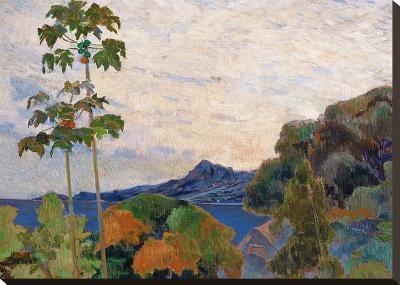 Martinique Landscape, 1887 (Detail)-Paul Gauguin-Stretched Canvas Print