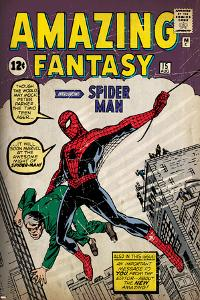 Marvel Comics Retro: Amazing Fantasy Comic Book Cover No.15, Introducing Spider Man (aged)