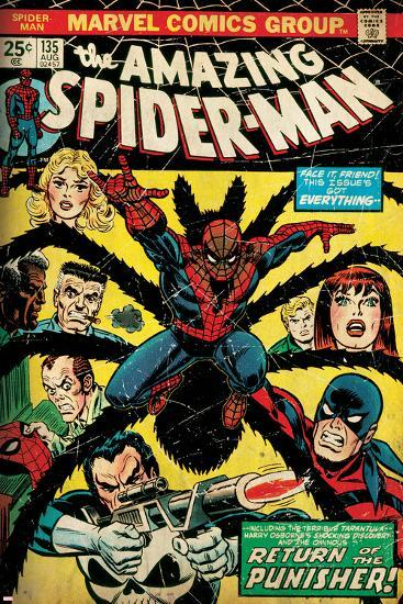 Marvel Comics Retro: The Amazing Spider-Man Comic Book Cover No.135, Return of the Punisher! (aged)--Art Print