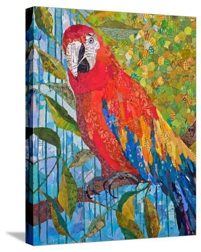 Marvelous Macaw--Stretched Canvas Print