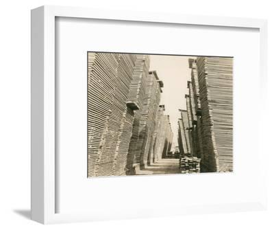 Shaffer Box - Lumber Piles, 1928