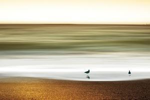 Golden Shores by Marvin Pelkey