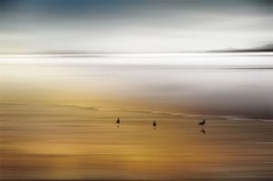 Quiet Invitation by Marvin Pelkey