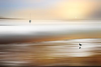 Silent Pause by Marvin Pelkey