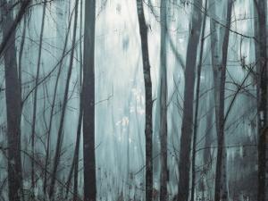 Spring Mist I by Marvin Pelkey