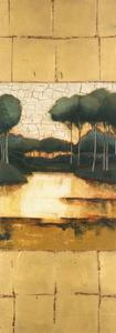 Golden Reflections 2 by Mary Calkins