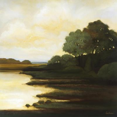 Serenity I by Mary Calkins