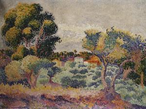 Eucalyptus and Olive Grove, 1907 by Mary Cassatt