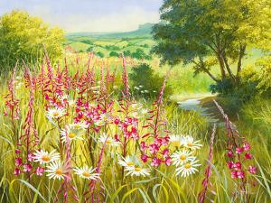 A Meadow In Spring by Mary Dipnall