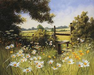 On the Footpath by Mary Dipnall