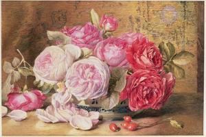 Pink and Red Roses in a Bowl by Mary Elizabeth Duffield