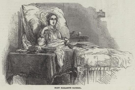 Mary Elizabeth Squirrel--Giclee Print