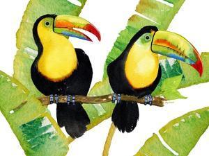 Tropcial Toucan Pair by Mary Escobedo