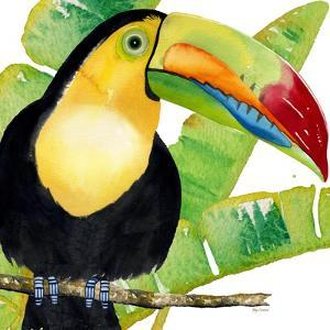 Tropical Toucan by Mary Escobedo