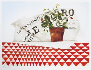 Strawberry Plant and Figaro by Mary Faulconer
