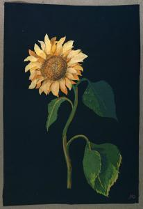 Sunflower by Mary Granville Delany