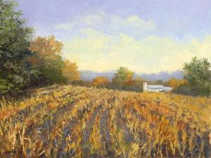 Corn Rows by Mary Jean Weber