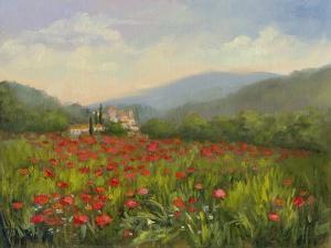 Umbrian Poppy Field by Mary Jean Weber