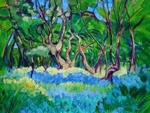 Bluebell Wood by Mary Kemp