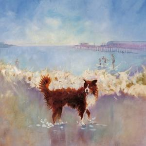 Chocolate Brown Border Collie by Mary Kemp