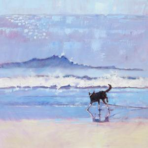 Grace The Border Collie Encounters A Wave No 2 by Mary Kemp