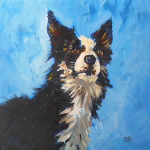Magnificent Border Collie by Mary Kemp