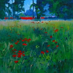 Poppies As Far As The Eye Can See by Mary Kemp