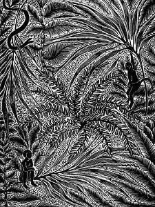 Jungle by Mary Kuper