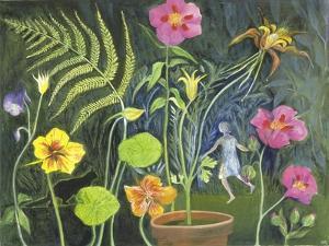 Secret Garden by Mary Kuper