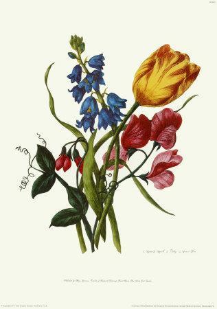 Bouquet with Tulipa Gesneriana